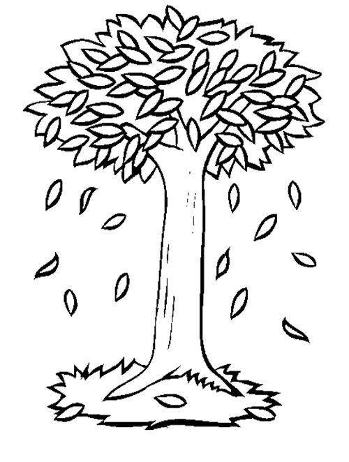 free printable fall tree coloring pages fall tree coloring pages getcoloringpagescom printable tree coloring free fall pages