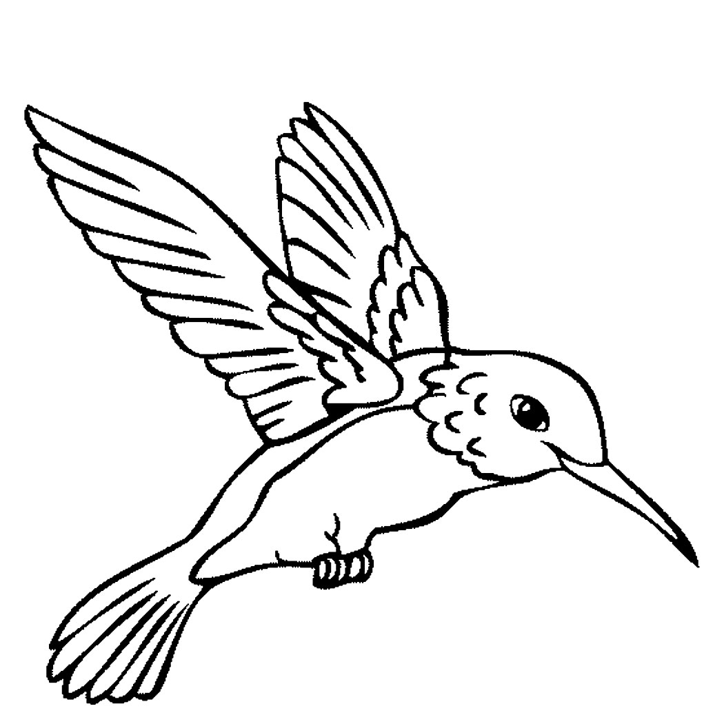 free printable hummingbird coloring pages 20 coloring pages of hummingbirds collection coloring sheets free printable coloring pages hummingbird