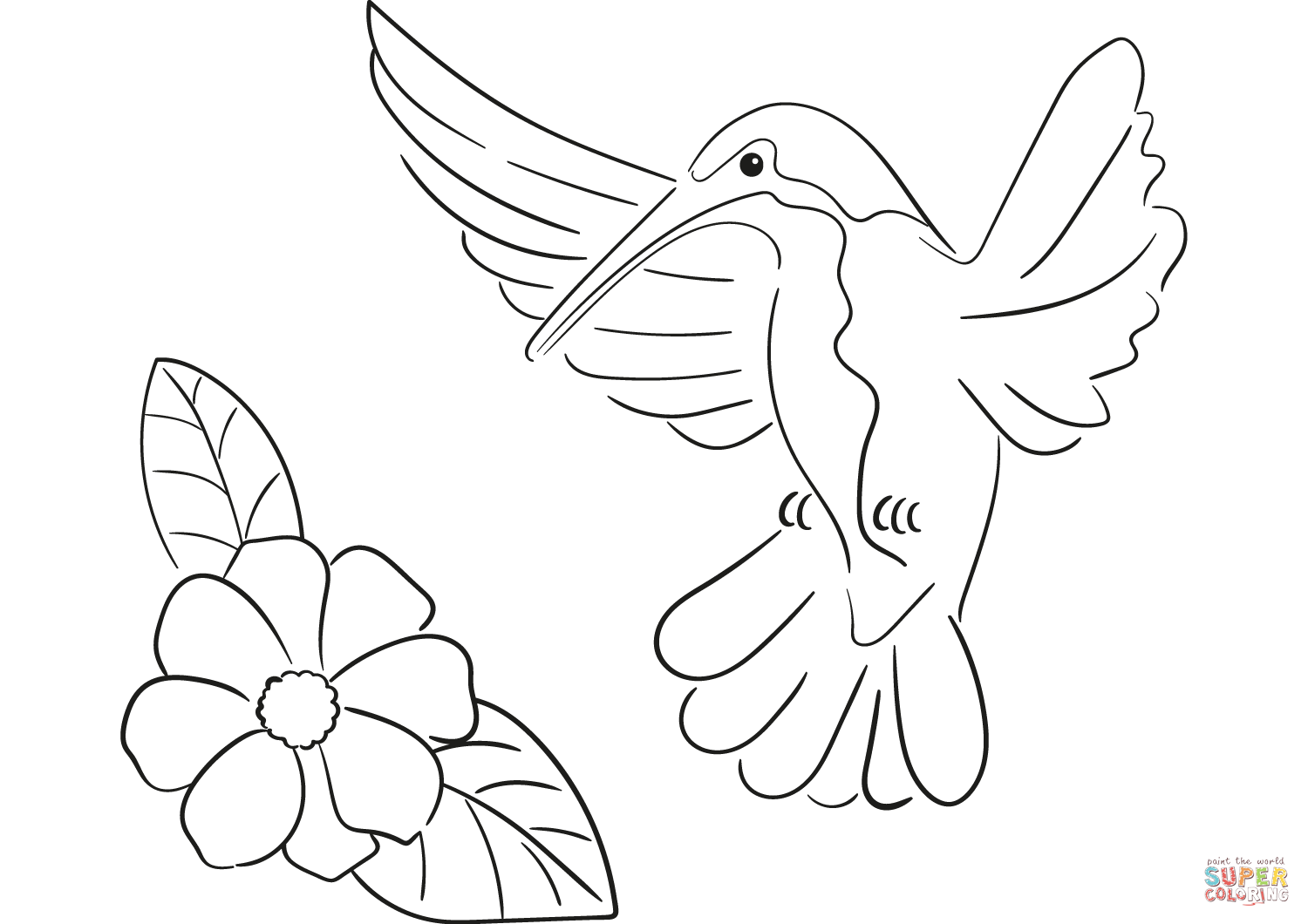 free printable hummingbird coloring pages hummingbird coloring page coloring home coloring hummingbird pages free printable