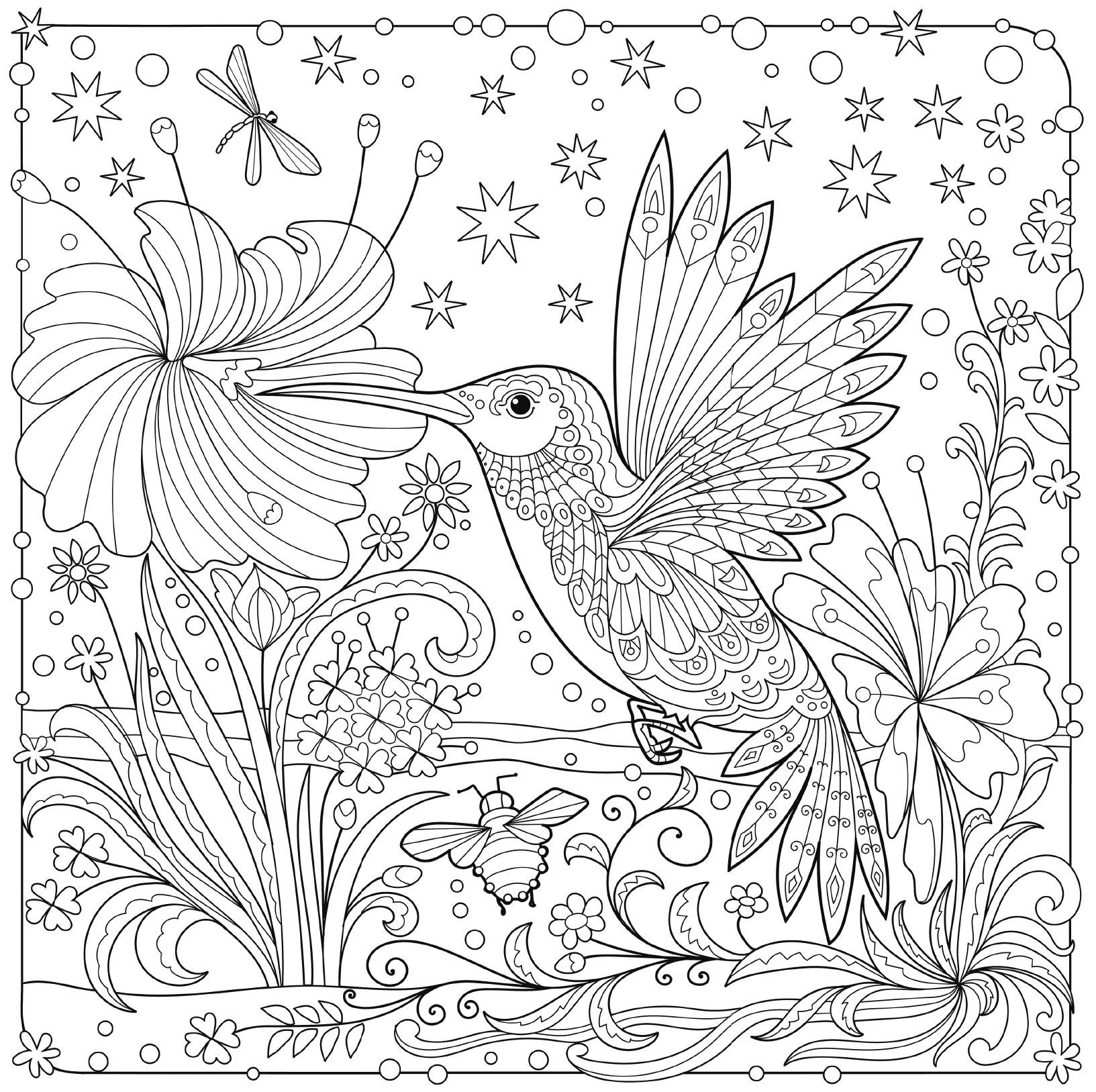 free printable hummingbird coloring pages hummingbird coloring page free printable coloring pages pages coloring hummingbird printable free