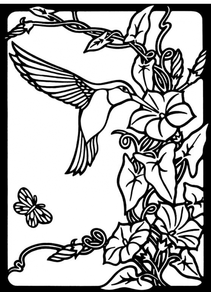 free printable hummingbird coloring pages online printable cartoon hummingbird coloring page for free pages printable coloring hummingbird