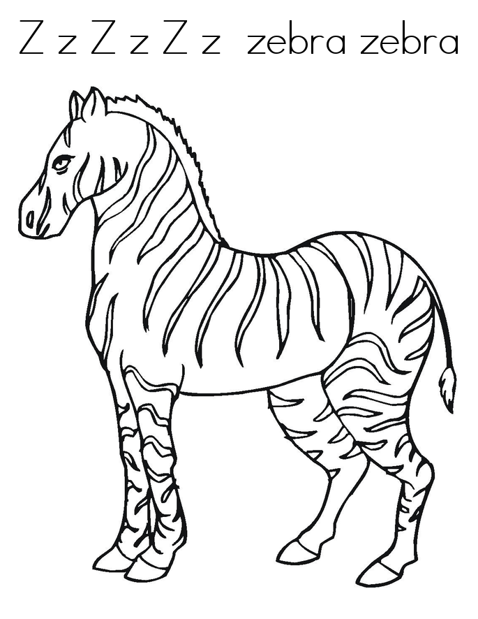 free zebra coloring pages to print free printable zebra coloring pages for kids animal place free coloring zebra pages print to
