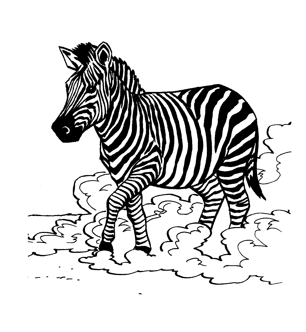 free zebra coloring pages to print free printable zebra coloring pages for kids coloring free print zebra pages to