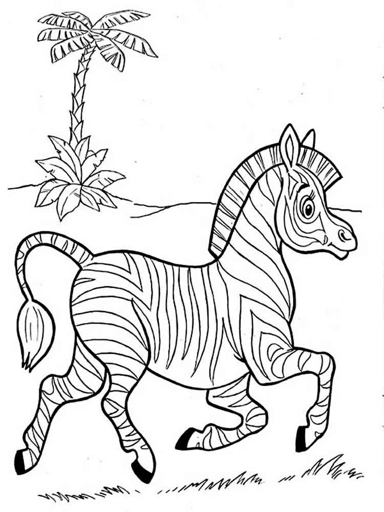 free zebra coloring pages to print free printable zebra coloring pages for kids free coloring to zebra pages print