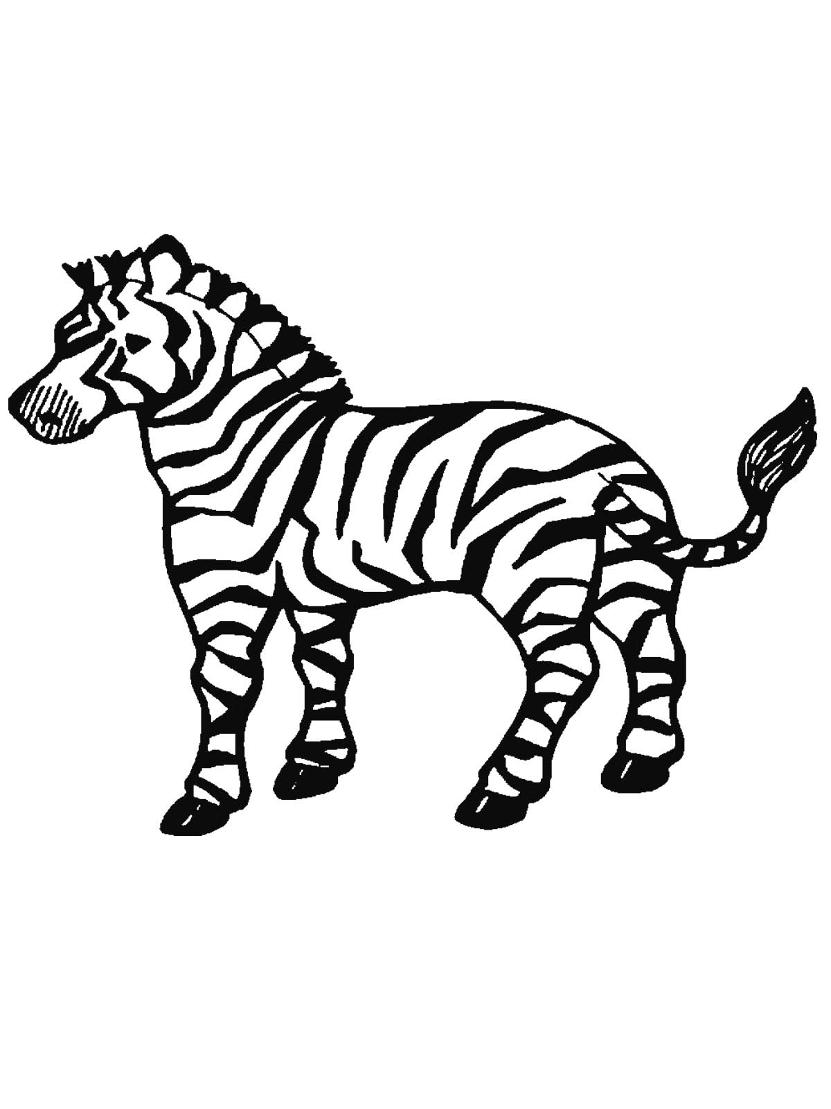 free zebra coloring pages to print free printable zebra coloring pages for kids zebra free print pages to coloring
