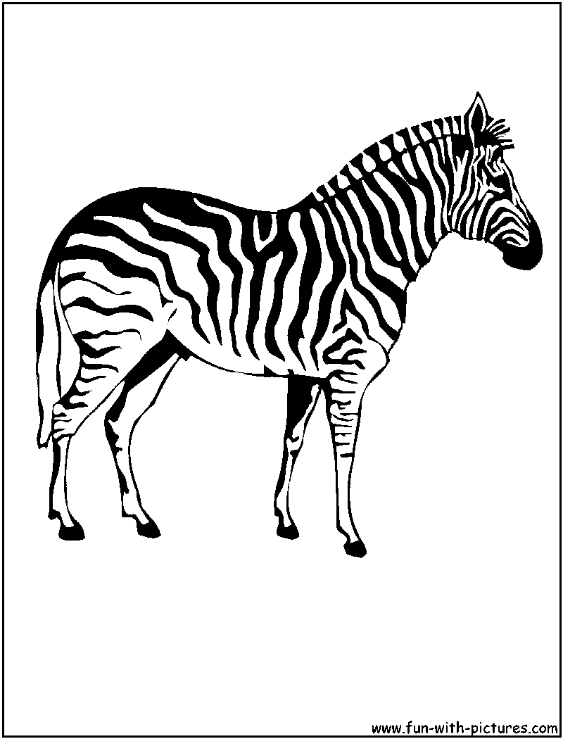 free zebra coloring pages to print free zebra coloring pages to print pages free zebra print coloring to