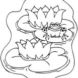 frog on lily pad coloring page drawing frog on lily pad coloring page color luna pad page lily frog coloring on