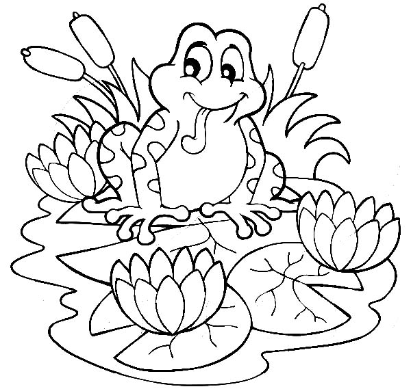 frog on lily pad coloring page frog jump on lily pad coloring page color luna frog page lily pad coloring on
