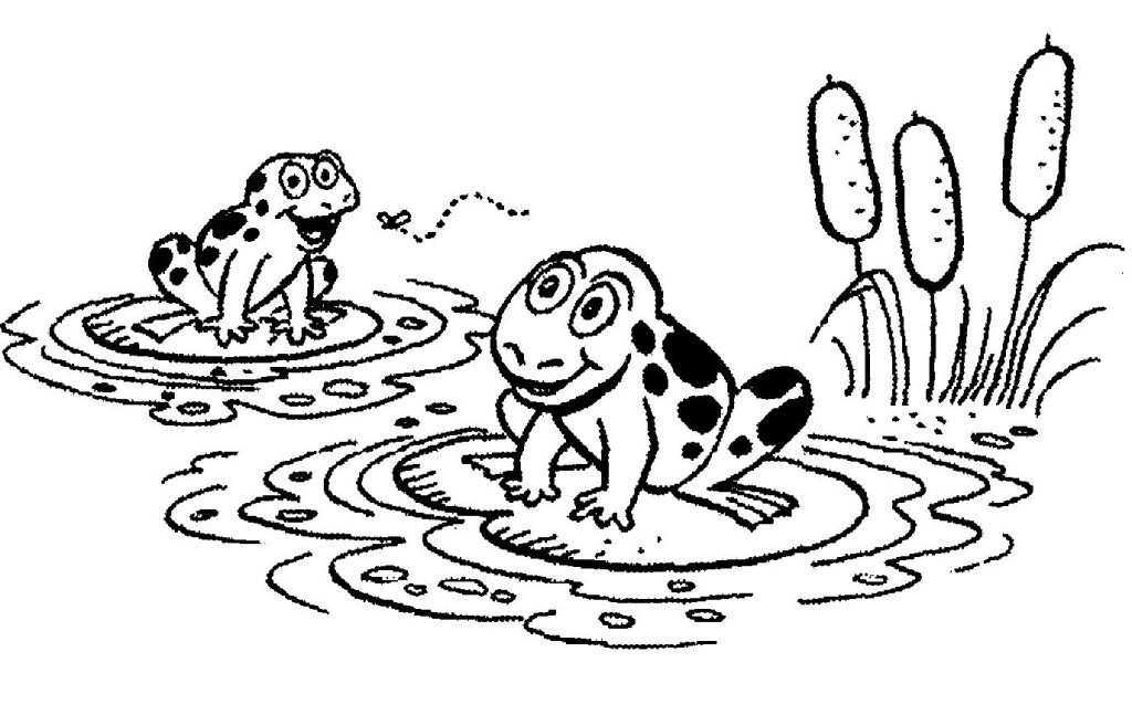 frog on lily pad coloring page frog lily pad coloring coloring page free frog coloring page frog on coloring lily pad