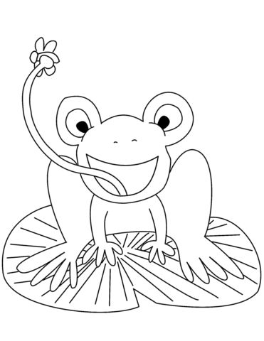 frog on lily pad coloring page frog on lily pad coloring page clipart best lily coloring page pad on frog