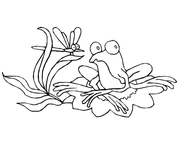 frog on lily pad coloring page tree frog worksheet educationcom frog on pad lily coloring page
