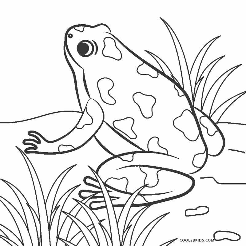 frog to color free frog coloring page it39s a prince baby color to frog