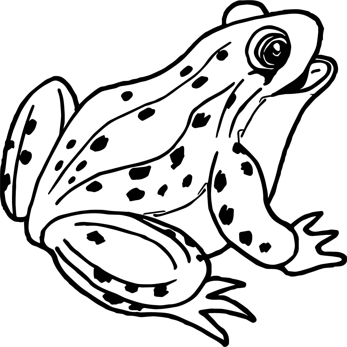 frog to color frog coloring pages kidsuki frog to color
