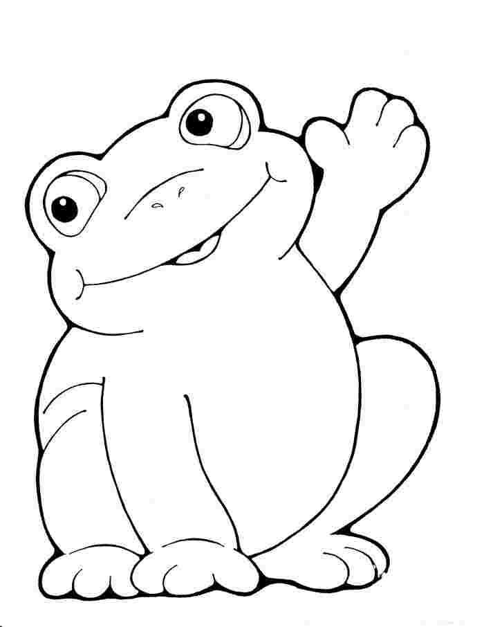 frogs coloring pages frog color pages for children activity shelter frogs pages coloring