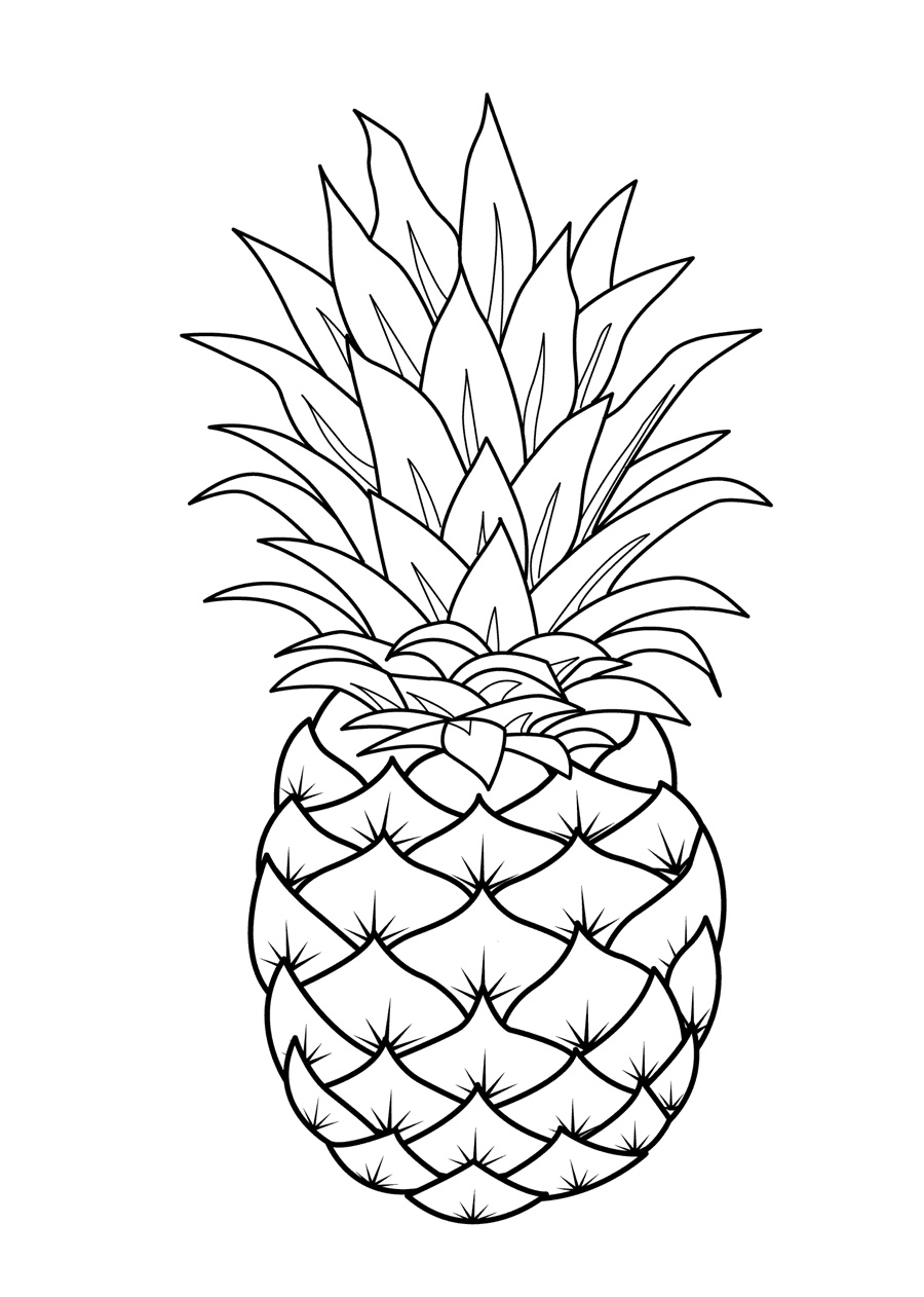fruit colouring in 55 fruit printable coloring pages fruit pineapple fruits colouring fruit in