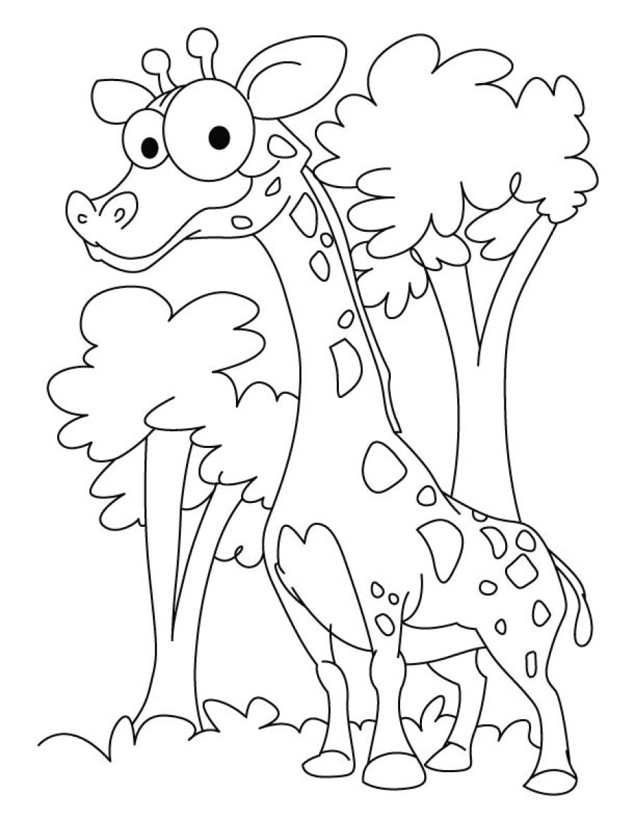 funny coloring pictures free printable funny coloring pages for kids pictures funny coloring 1 1