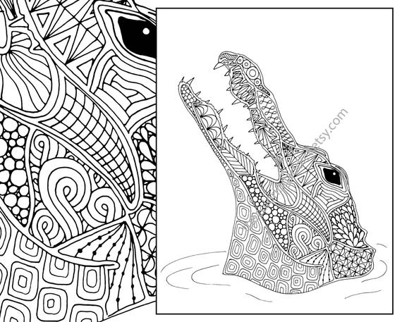 gator coloring sheets crocodile coloring pages coloring pages to download and gator sheets coloring