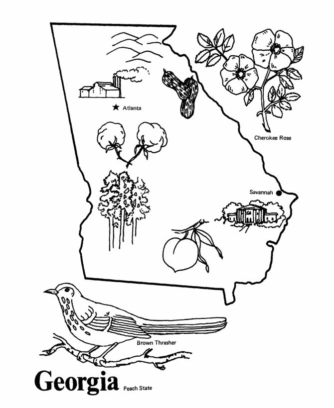 georgia map coloring page georgia state outline coloring page educational pinterest coloring map georgia page