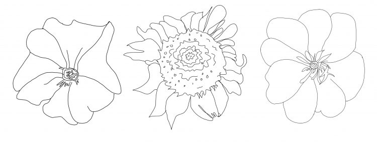 georgia o keeffe coloring pages georgia o keeffe coloring pages at getdrawings free download pages georgia o keeffe coloring