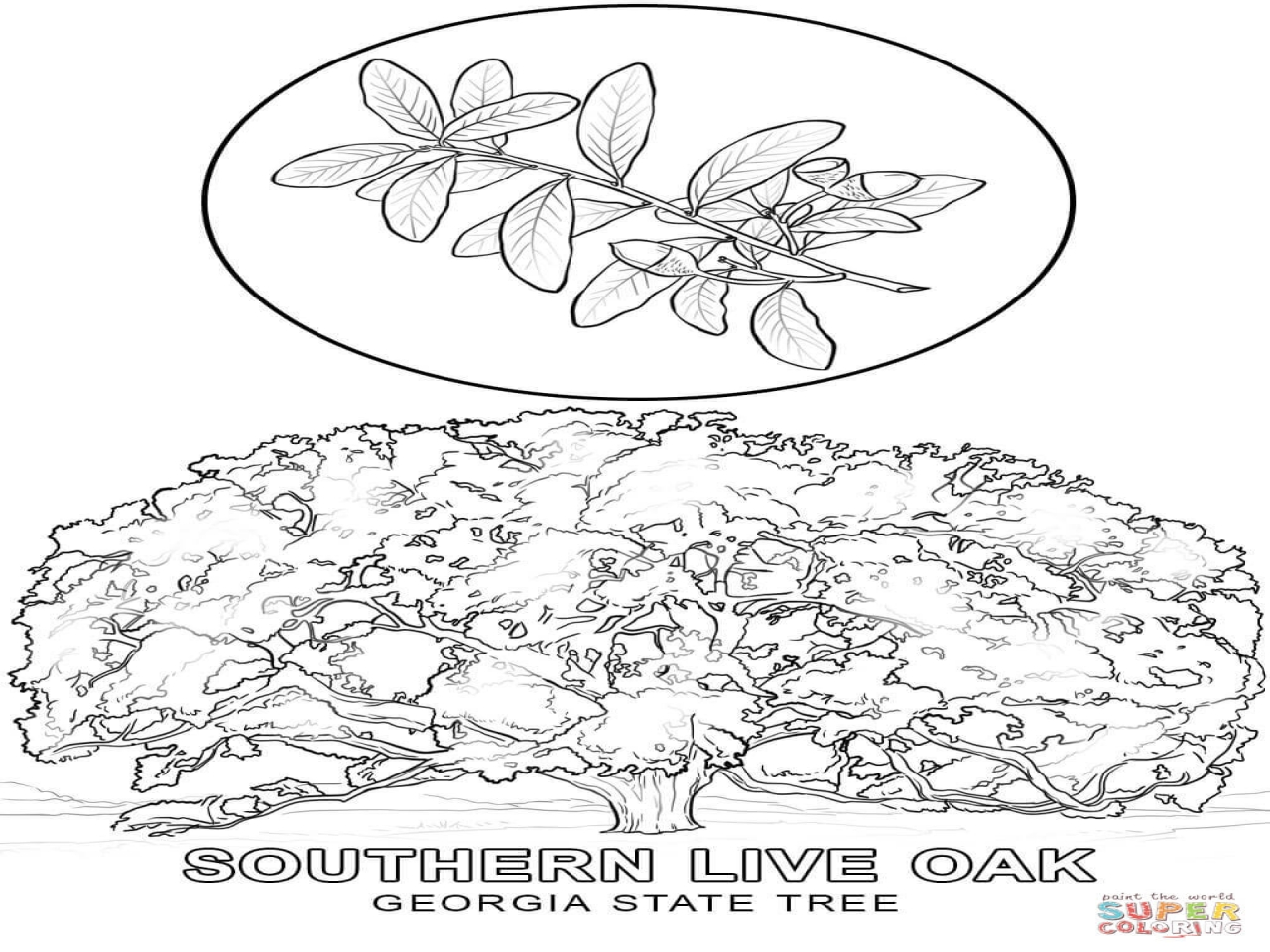 georgia o keeffe coloring pages o39keeffe colouring pages coloring pages cute coloring coloring georgia pages o keeffe
