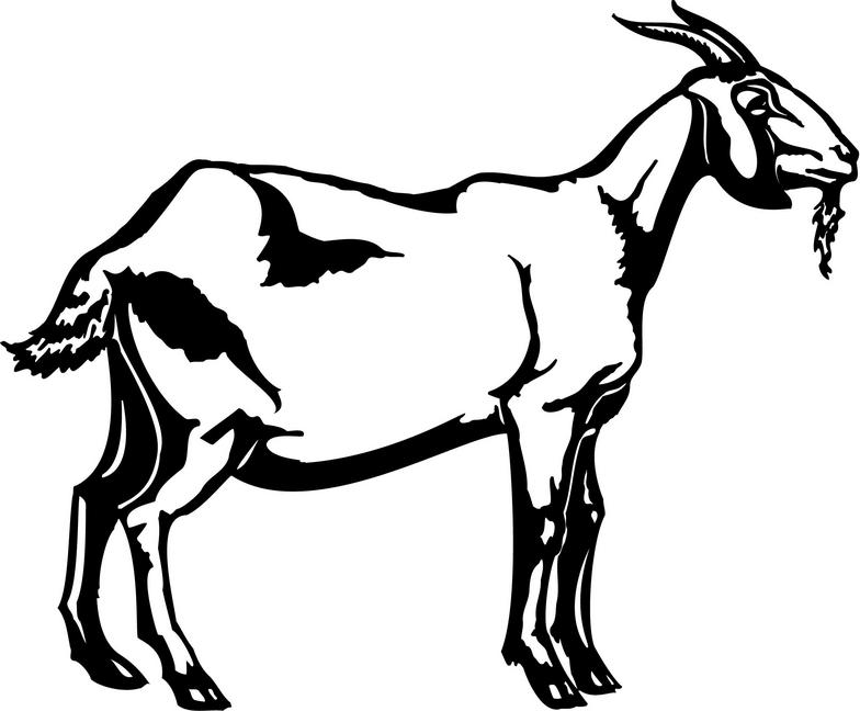 goat picture cartoon free ranch cliparts download free clip art free clip art picture cartoon goat