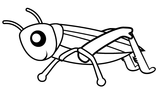 grasshopper pictures for kids grasshopper tiny grasshopper coloring page coloring kids for grasshopper pictures