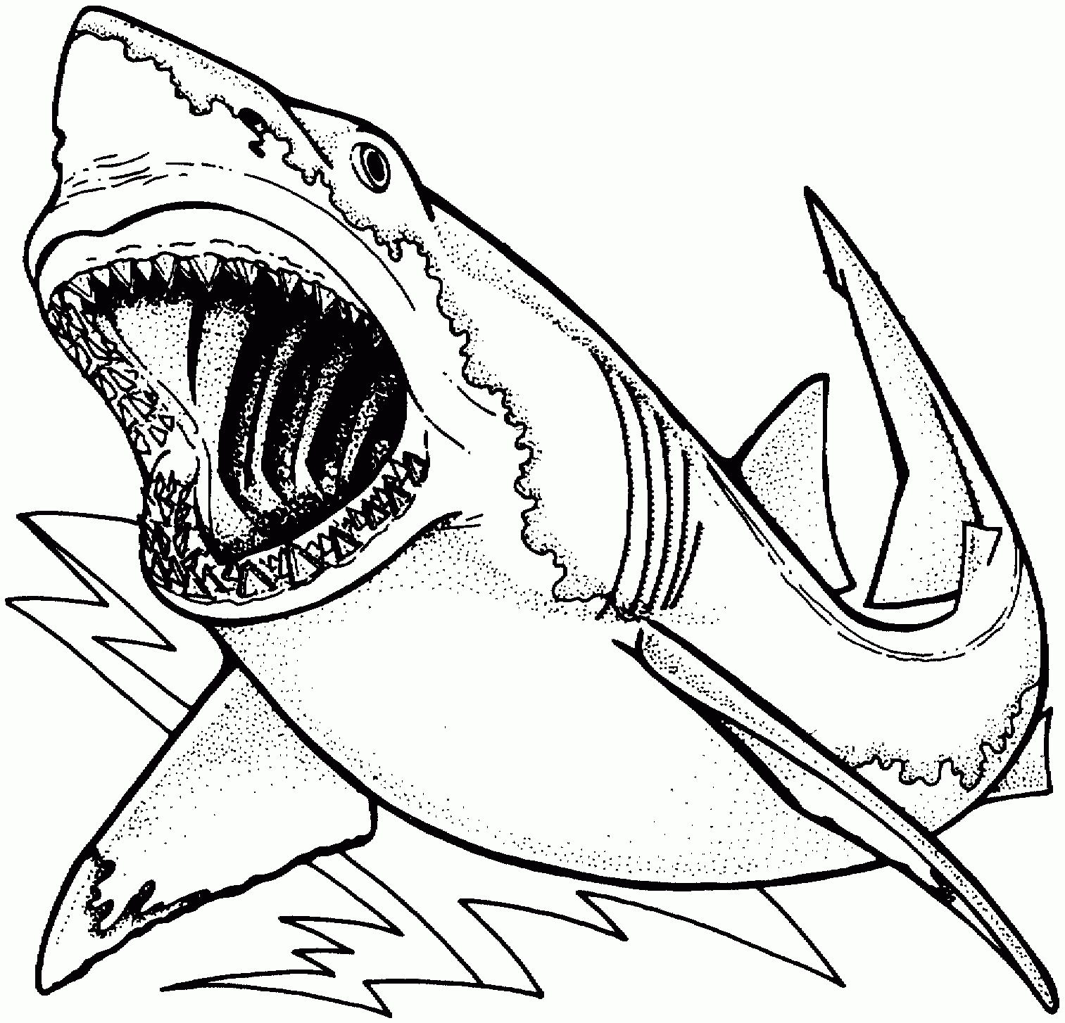 great white shark coloring page hungry shark coloring pages at getdrawings free download coloring great shark white page