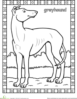greyhound dog coloring pages greyhound coloring page by yuckles coloring greyhound pages dog