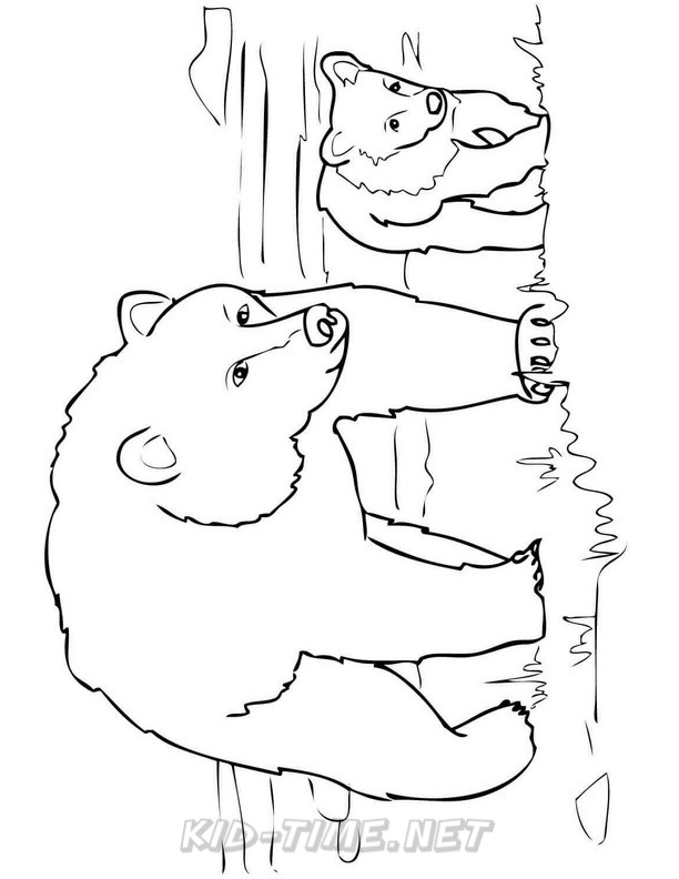 grizzly bear drawing step by step draw a grizzly bear step by step drawing sheets added bear grizzly step step by drawing
