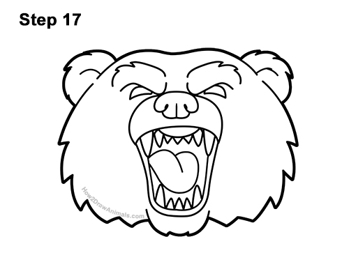 grizzly bear drawing step by step how to draw a bear head detail video step by step pictures step grizzly drawing step bear by