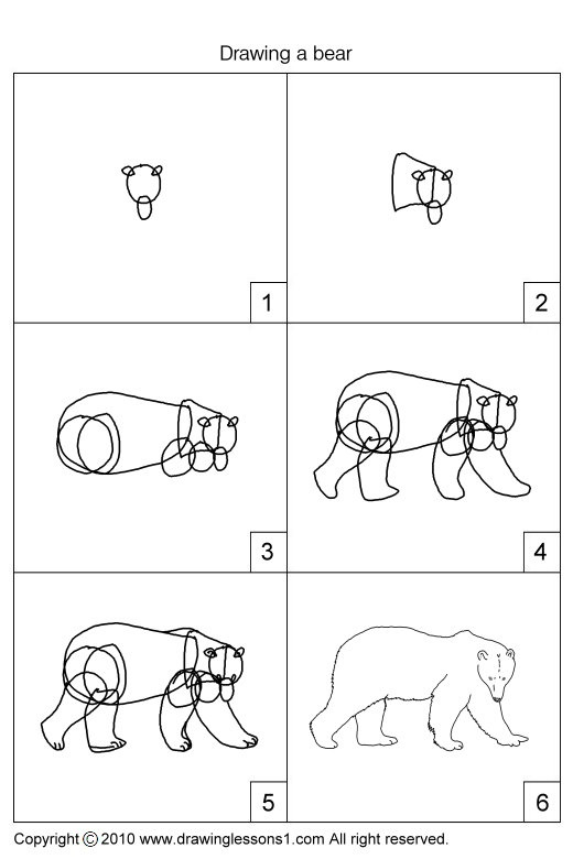 grizzly bear drawing step by step how to draw grizzly bear step by step drawing tutorials drawing step grizzly by bear step
