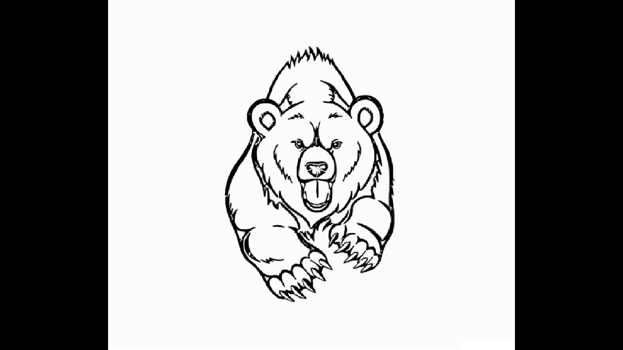grizzly bear drawing step by step how to draw running quotgrizzly bearquot pencil drawing step by bear step drawing grizzly by step