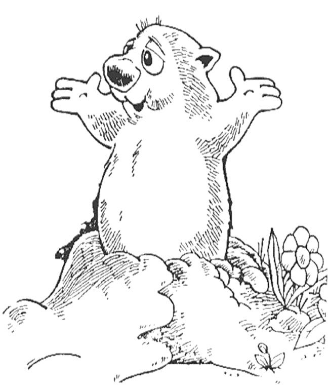 groundhog day coloring page groundhog day coloring pages to download and print for free page groundhog day coloring