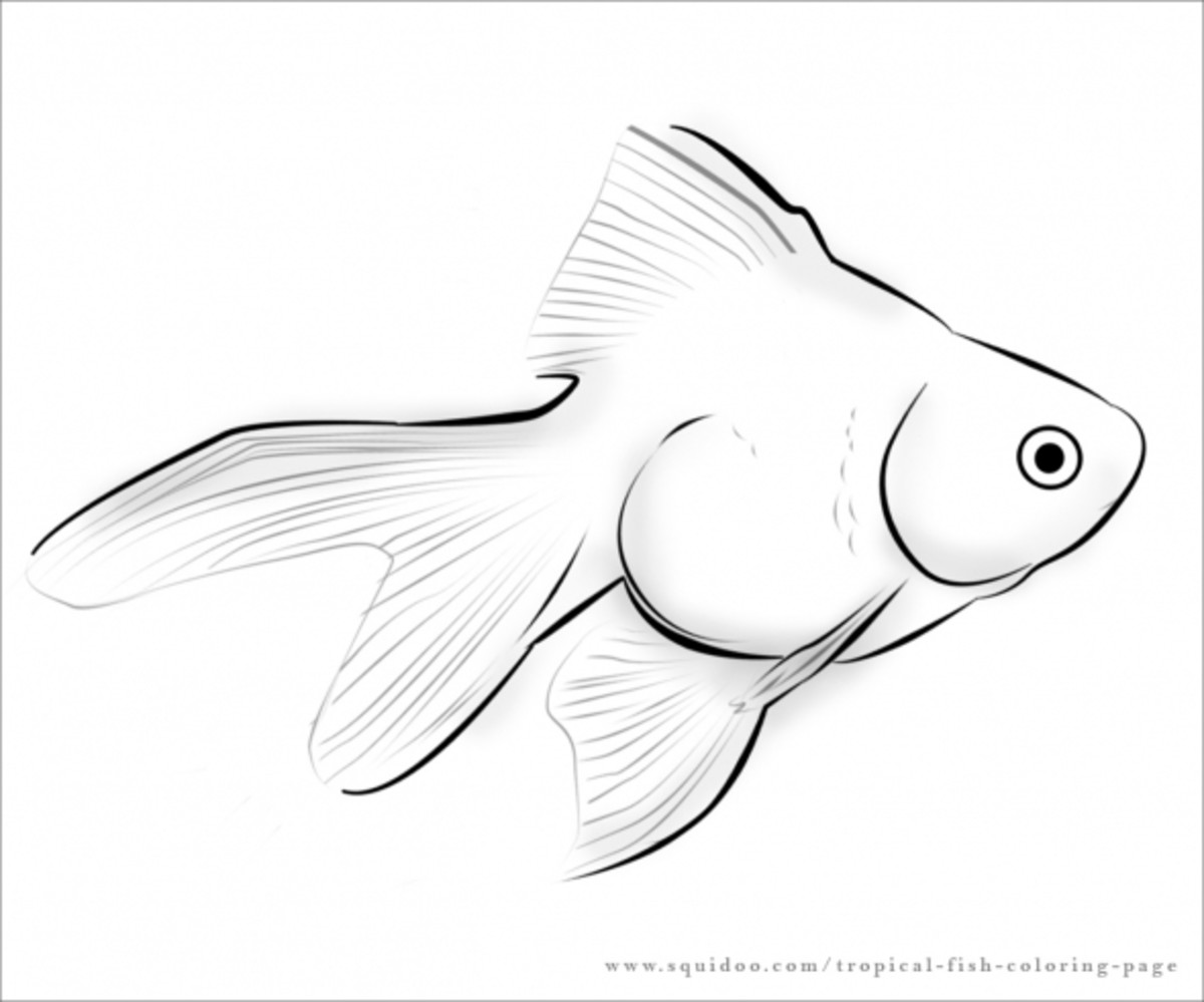 guppy fish coloring pages bubble guppies coloring pages google search bubble fish guppy pages coloring