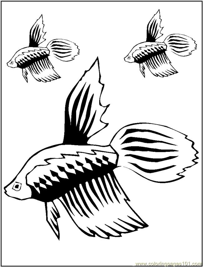 guppy fish coloring pages bubble guppies fish clipart best pages coloring fish guppy