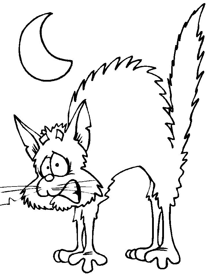 halloween cat coloring page scaredy cat halloween coloring pages pinterest coloring page cat halloween