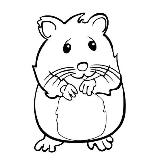 hamster coloring pages to print 25 best hamster coloring pages your toddler will love to print hamster coloring pages to