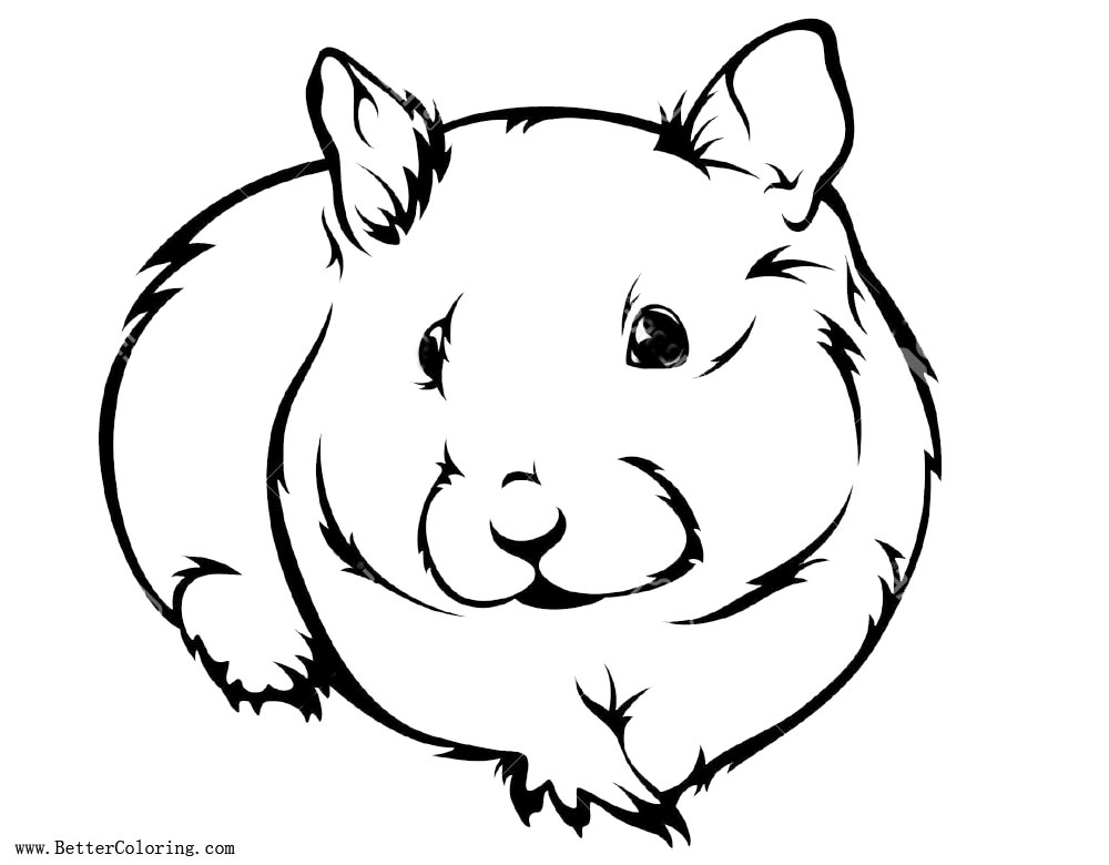 hamster coloring pages to print cute hamster coloring pages coloring pages pinterest coloring to hamster pages print
