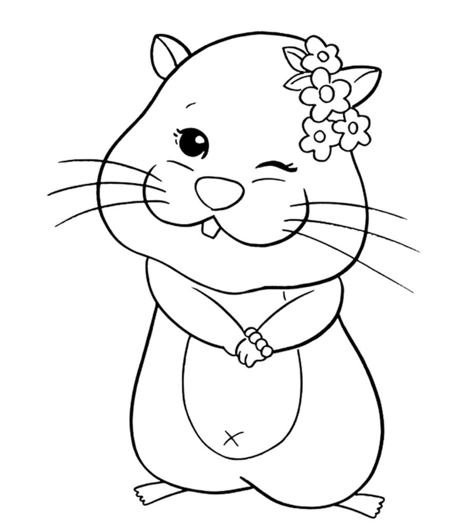 hamster coloring pages to print hamster coloring pages best coloring pages for kids to pages coloring hamster print
