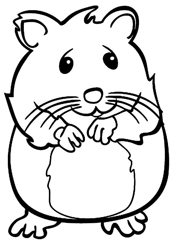 hamster coloring pages to print hamster coloring pages to download and print for free pages hamster print to coloring