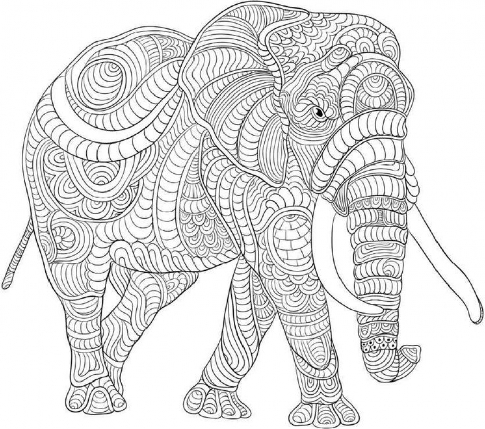 hard drawings to color get this difficult elephant coloring pages for grown ups hard drawings color to