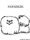 havanese puppy coloring pages dogs coloring pages free printable colouring pages for coloring havanese puppy pages