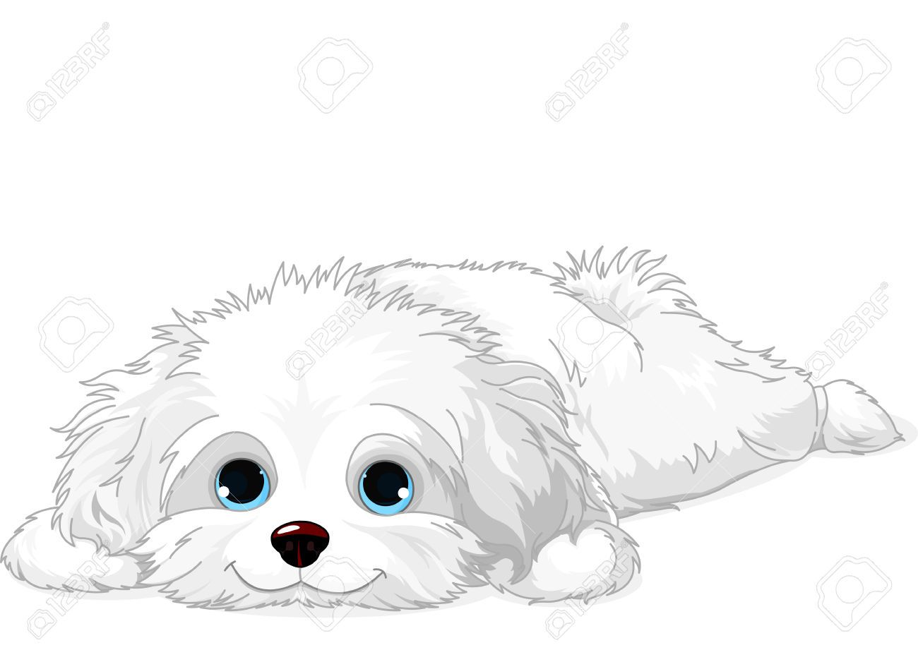 havanese puppy coloring pages havanese coloring pages google search havana silk pages havanese puppy coloring