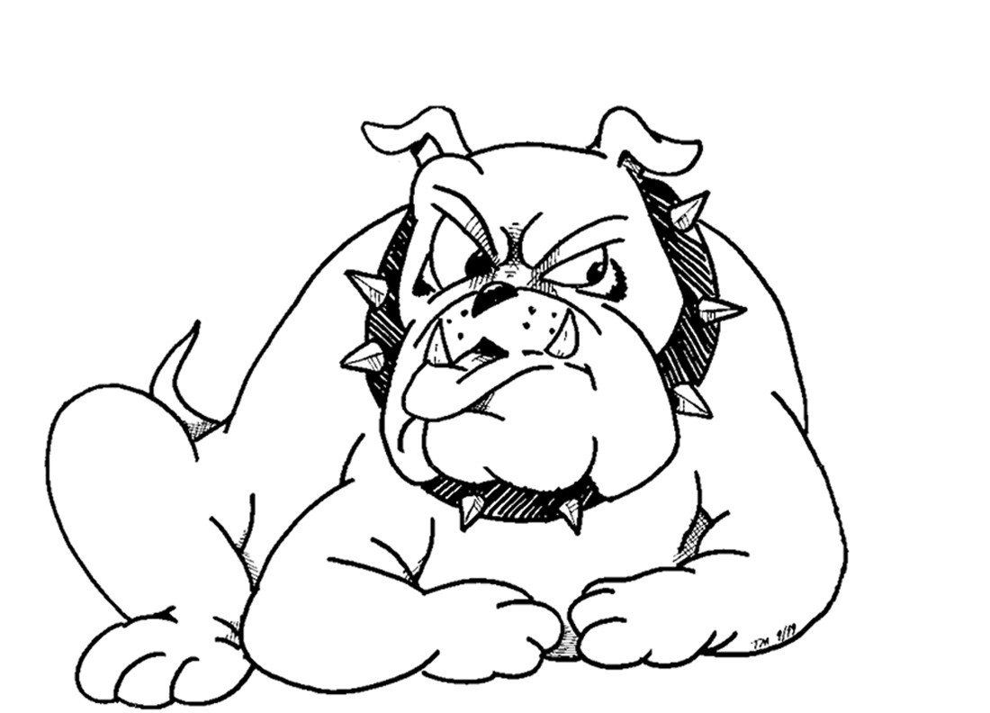 havanese puppy coloring pages image result for fluffy dog coloring pages animal puppy pages coloring havanese