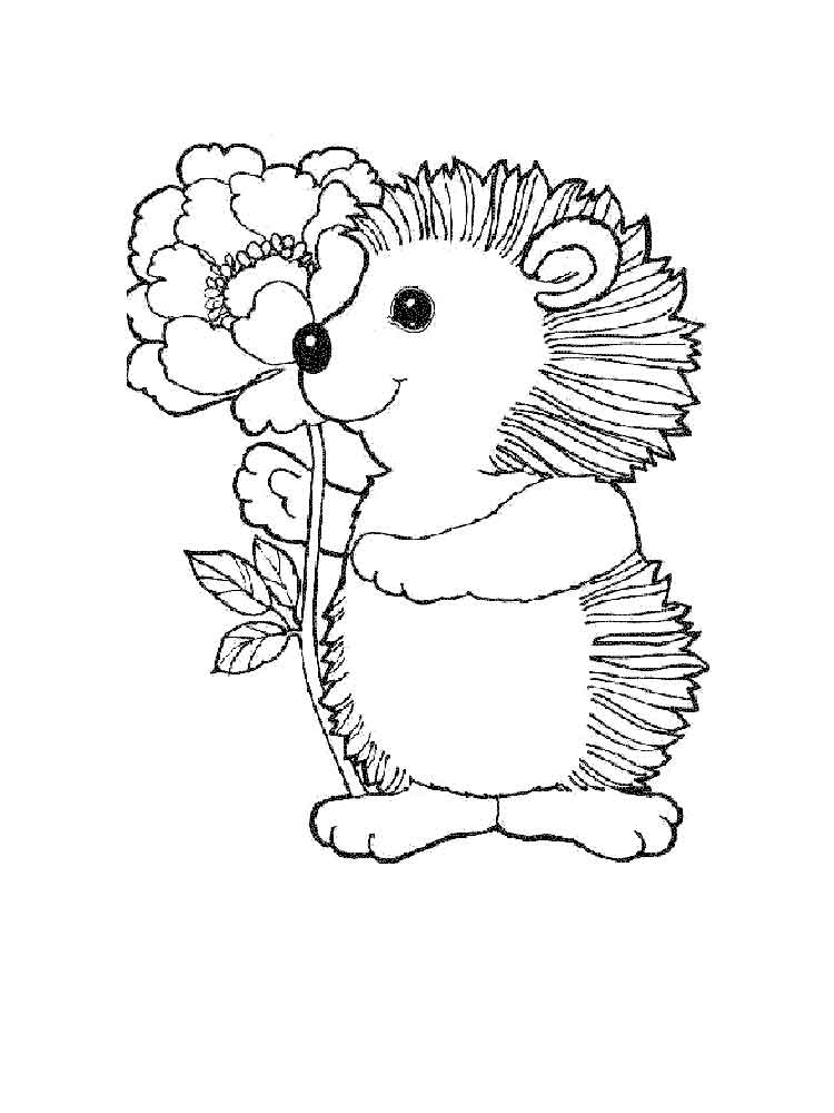hedgehog pictures to color cute hedgehog autumn illustration coloring page pictures to color hedgehog