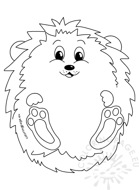 hedgehog pictures to color hedge coloring pages hedgehog color to pictures