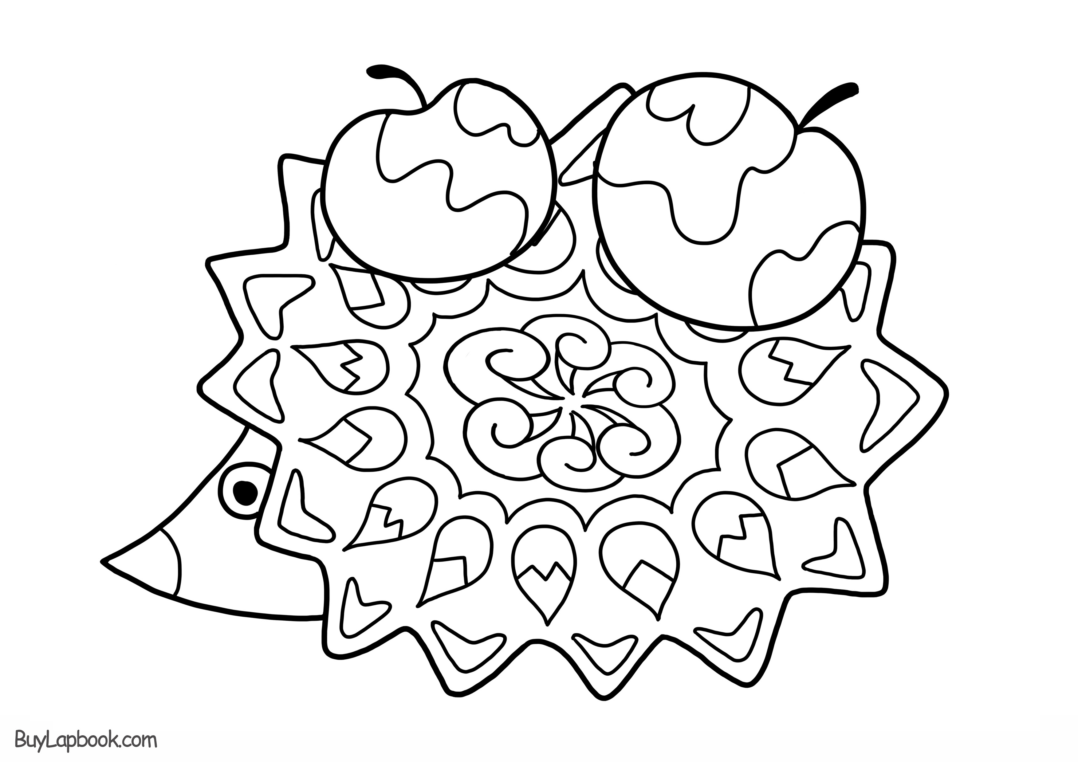 hedgehog pictures to color hedgehog coloring pages download and print hedgehog color to hedgehog pictures