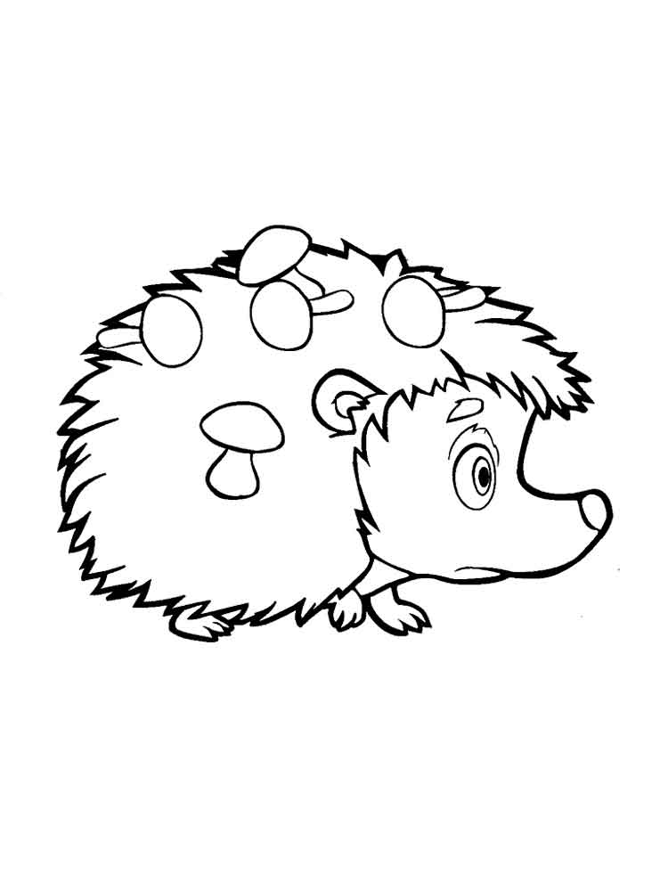 hedgehog pictures to color hedgehog coloring pages to download and print for free pictures to hedgehog color