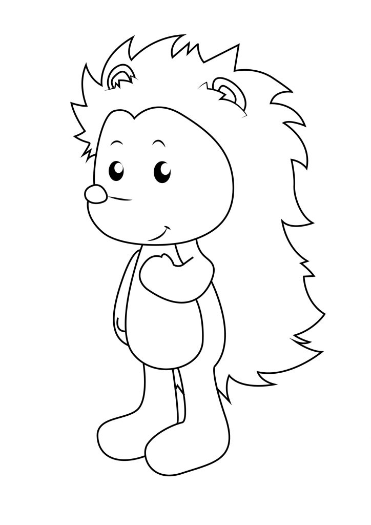 hedgehog pictures to color pin by ruben rodriguez on coloring pages hedgehog colors color pictures to hedgehog