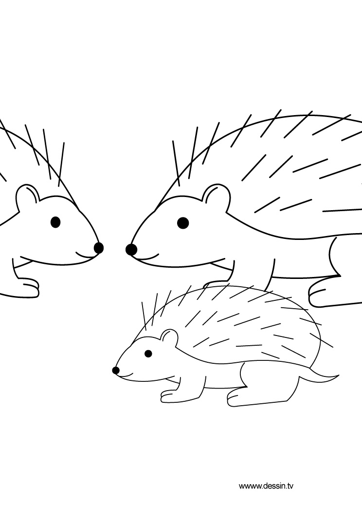 hedgehog pictures to color sonic the hedgehog coloring pages to download and print hedgehog color pictures to